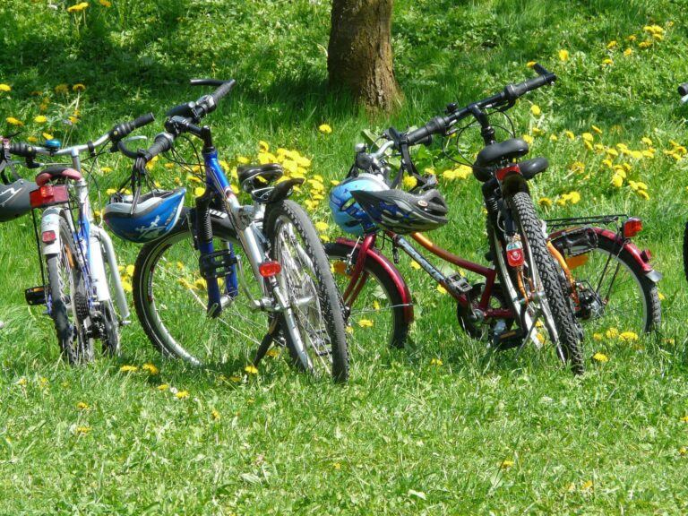 There are many Traffic Free Cycle Routes Scotland